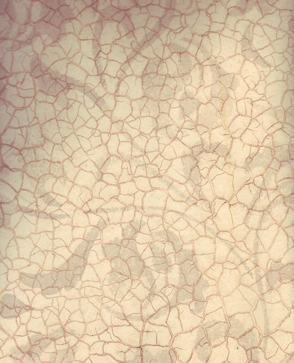 Кракелюр на фотообоях своими руками 2